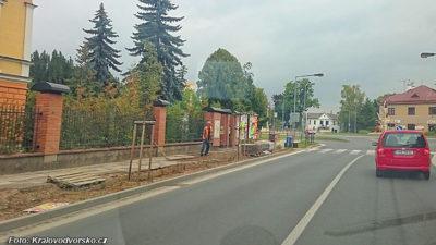 Mladíci v opilosti ničili stromy ve Dvoře Králové