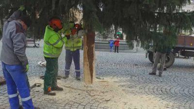Vánoční strom na Krakonošově náměstí už stojí