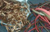 Dovolená a stravenky jim nestačily, ukradli stovky kilometrů kabelů