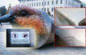 Za poničení ptačích soch zaplatí Uffo 50 000 Kč