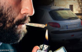 Zkouřený řidič a srážky vozidel se zvěří